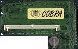 DKB Cobra -  back side